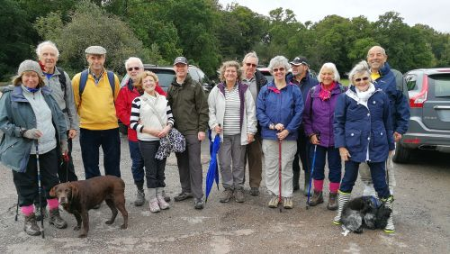 New Forest Walk, followed by warming pub meal Sunday 1st october
